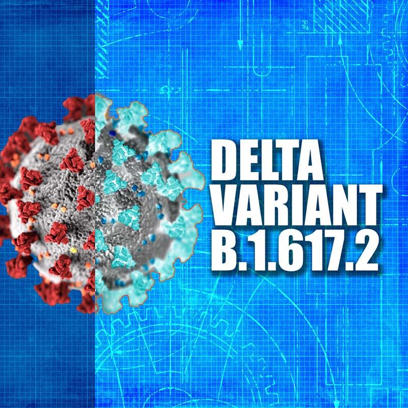 Delta Variant Precautions